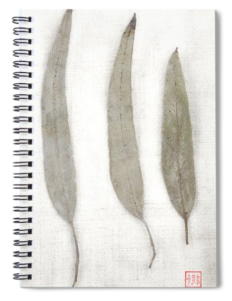 Three Eucalyptus Leaves Spiral Notebook