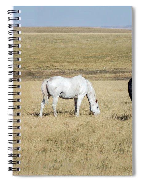 Three Horses Spiral Notebook