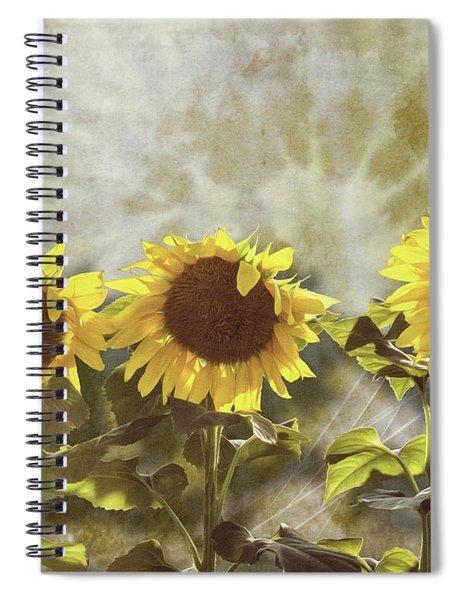 Three In The Sun Spiral Notebook