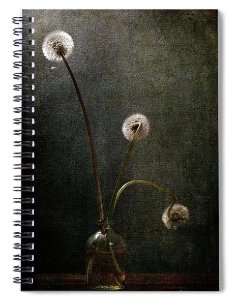 Three Little Lights Spiral Notebook