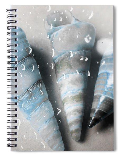Three Little Trumpet Snail Shells Over Gray Spiral Notebook
