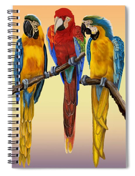 Three Macaws Hanging Out Spiral Notebook
