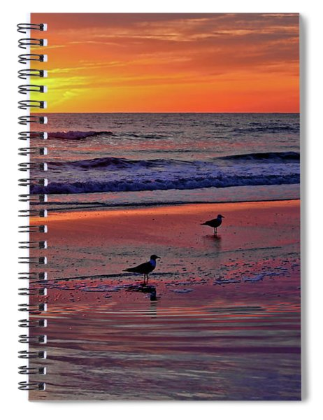 Three Seagulls On A Sunset Beach Spiral Notebook