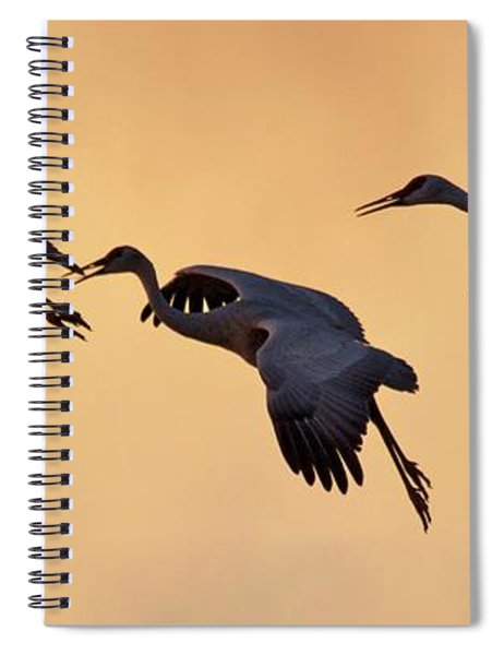 Spiral Notebook featuring the pyrography Three's Comapany by Michael Lucarelli