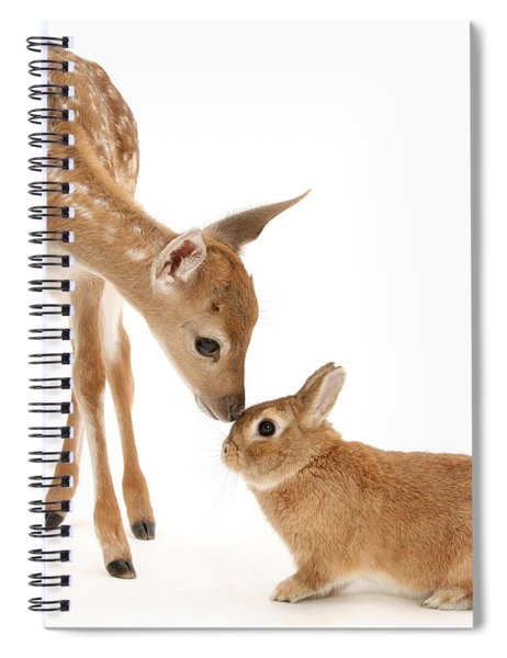 Thumper And Bambi Spiral Notebook