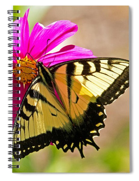 Tiger Swallowtail Butterfly. Spiral Notebook