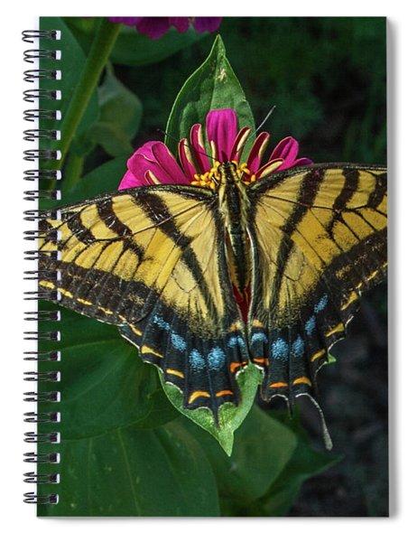 Tiger Swallowtail Spiral Notebook