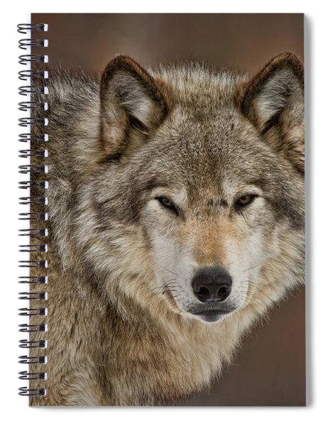 Timber Wolf Picture - Tw283 Spiral Notebook