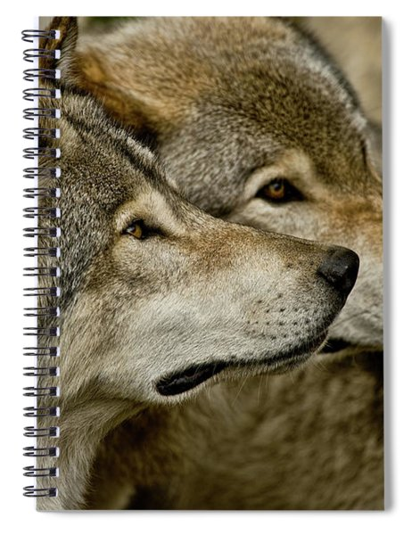 Timber Wolf Picture - Tw284 Spiral Notebook