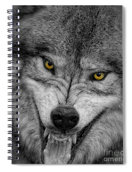 Timber Wolf Picture - Tw292 Spiral Notebook