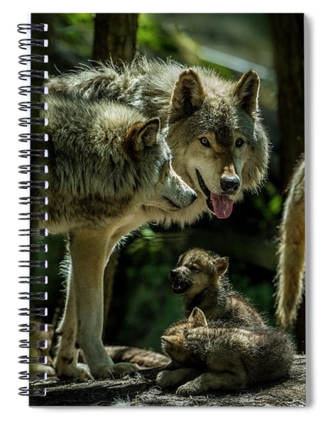 Timber Wolf Picture - Tw340 Spiral Notebook