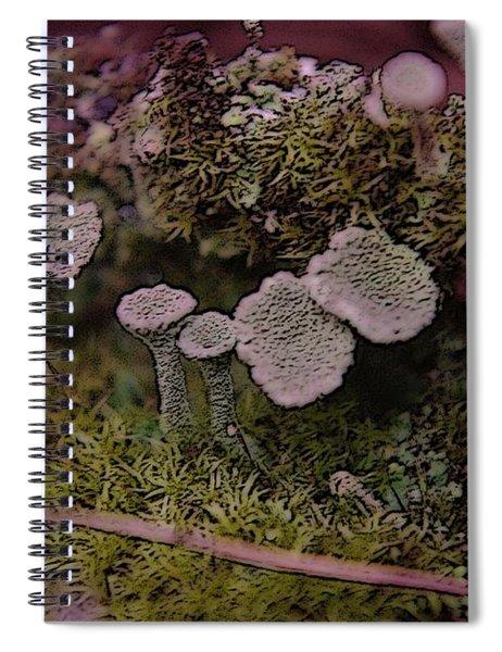 Tiny Mushrooms  Spiral Notebook