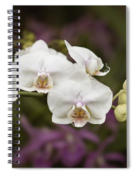 Tiny White Dancers Spiral Notebook