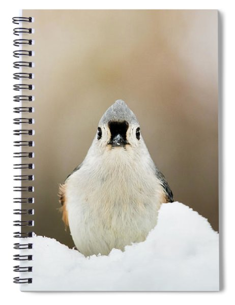 Tufted Titmouse In Snow Spiral Notebook