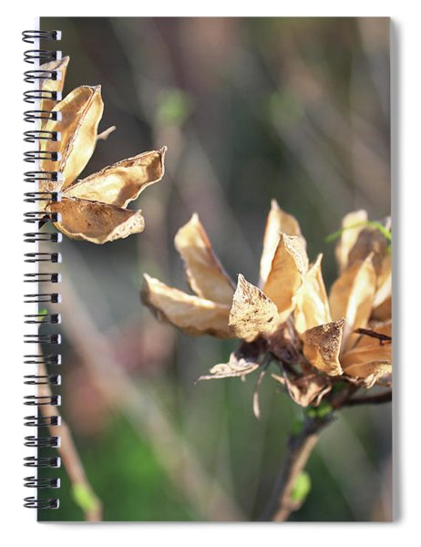 Toasted Spiral Notebook