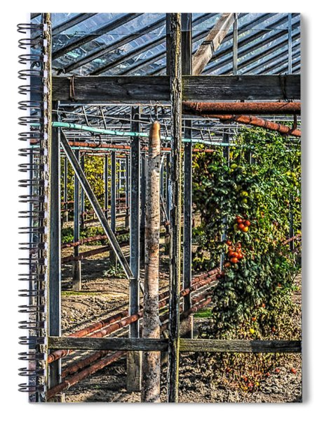Tomatoes And Pumpkins Spiral Notebook