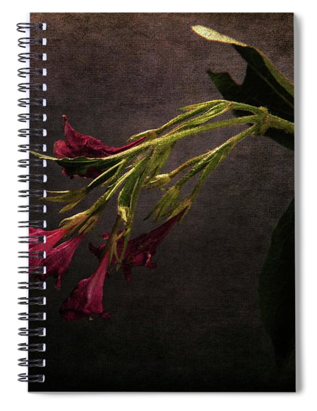 Toning Down Spiral Notebook