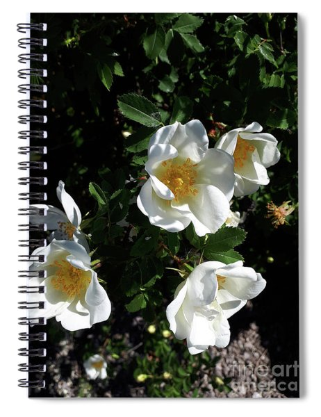 Too Thorny To Pick But Lovely All The Same Spiral Notebook