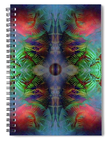 Topology Of Decalcomania Mirror Spiral Notebook