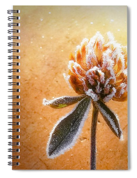 Torcia Spiral Notebook