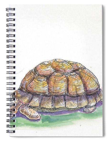 Tortoise Spiral Notebook