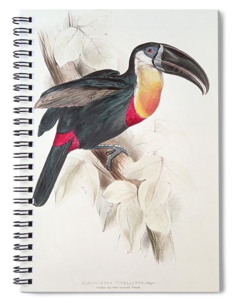 Toucan Spiral Notebook