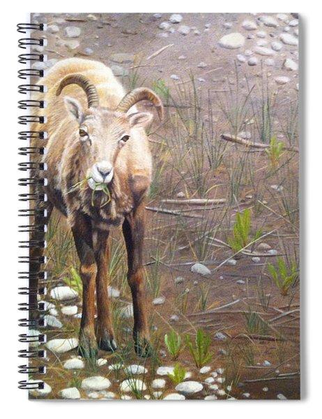 Tourist Attraction Spiral Notebook