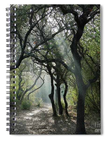 Trail Of Light Spiral Notebook