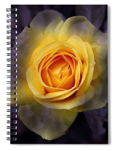 Transitional Rose Spiral Notebook