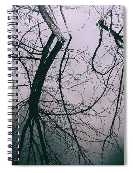 Tree In Cloud Reflection Spiral Notebook