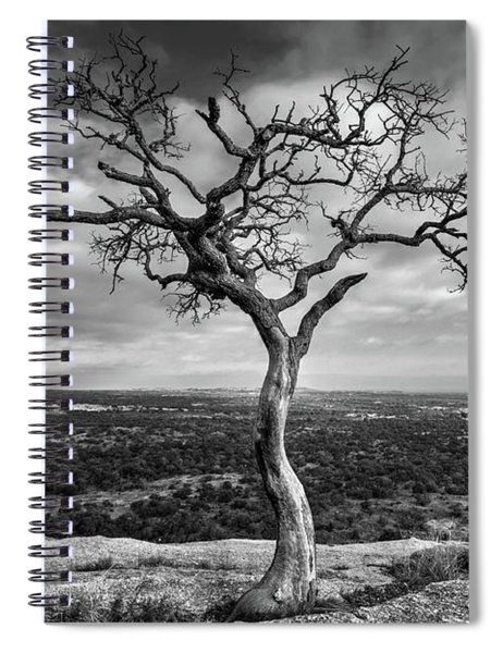 Tree On Enchanted Rock In Black And White Spiral Notebook