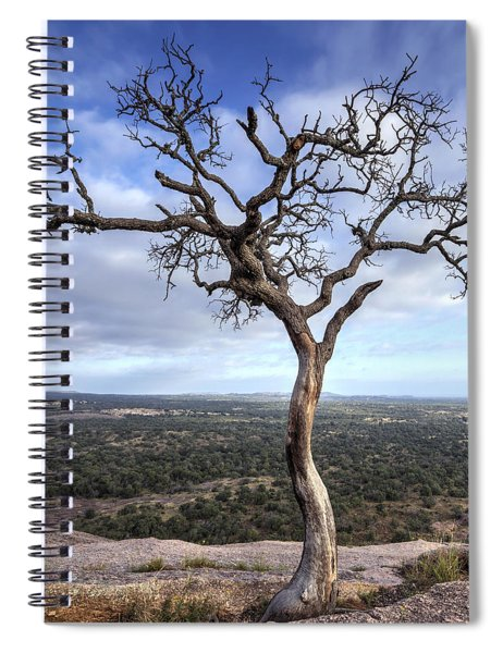 Tree On Enchanted Rock - Square Spiral Notebook