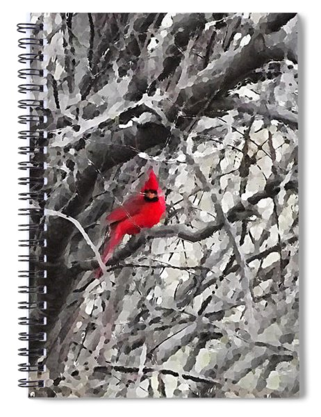 Tree Ornament Spiral Notebook