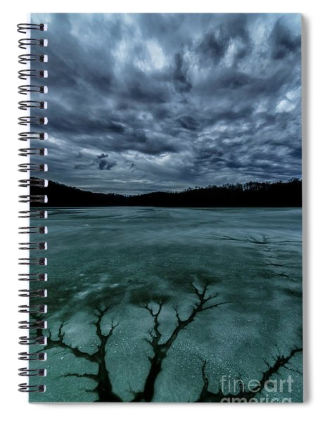 Tree Pattern In Thawing Ice Spiral Notebook