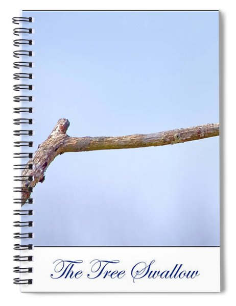 Tree Swallow On Branch Spiral Notebook