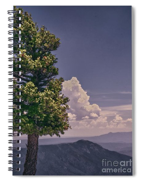 Tree Top Spiral Notebook
