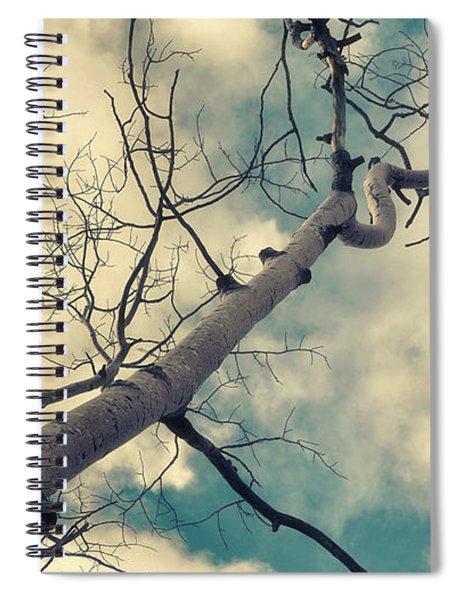 Tree Tops 1 Spiral Notebook