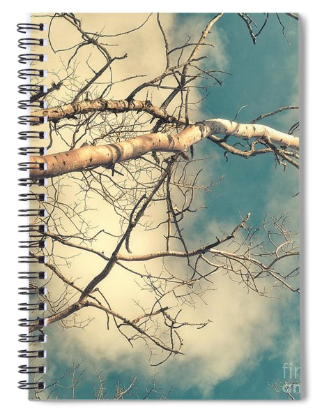 Tree Tops 3 Spiral Notebook