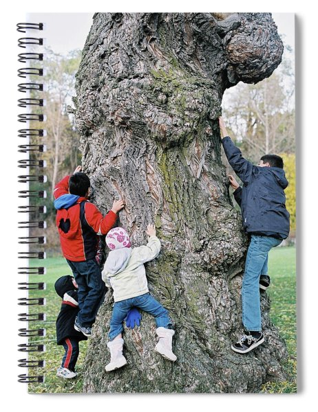 Tree Urchins Spiral Notebook