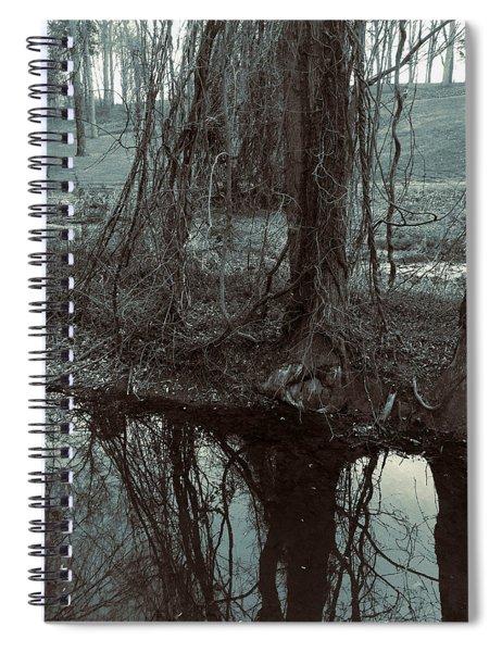 Tree Vines Water Spiral Notebook