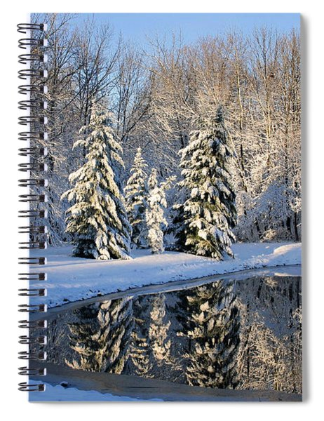 Treeflections Spiral Notebook