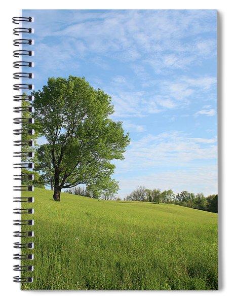 Summer Trees 3 Spiral Notebook