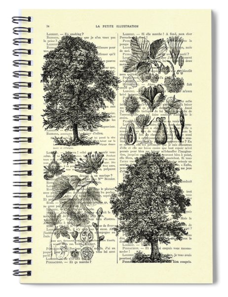 Trees And Seeds Black And White Spiral Notebook