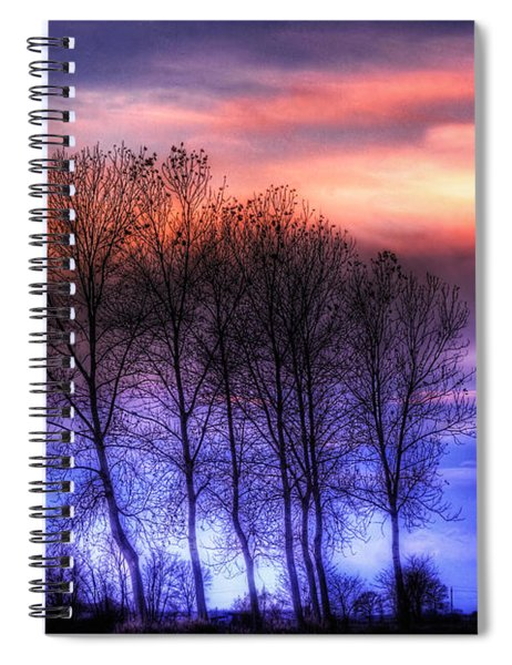 Trees And Twilight Spiral Notebook