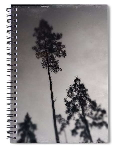 Trees Black And White Wetplate Spiral Notebook