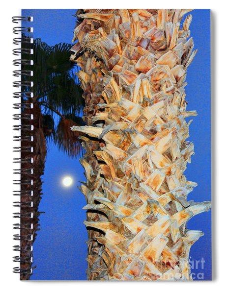 Trees Capture Sun Spiral Notebook