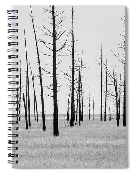 Trees Die Off Spiral Notebook