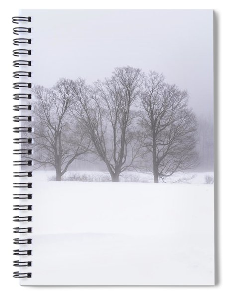 Trees In Fog Spiral Notebook