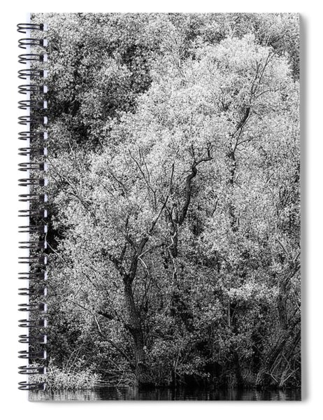 Trees On The River Spiral Notebook
