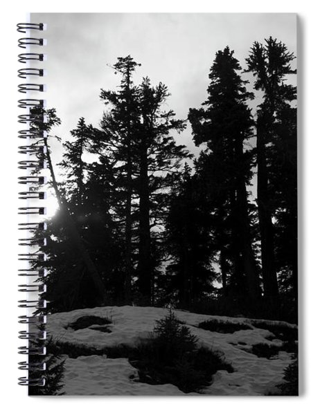 Trees Silhouettes Spiral Notebook